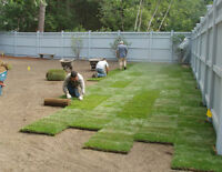 Sod / Grass Installations