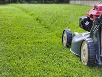 Spring Clean Ups & Lawn Cutting Services