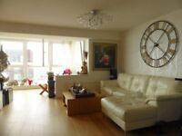 Studio flat in Bedford Tower - P1508