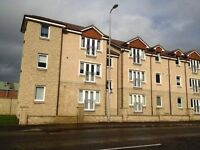 Double Room to rent in well-presented top floor flat in Mossend, Bellshill ML4