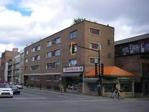 chaleureux grand 1 1/2  renove Cozy Loft Downtown/Plateau