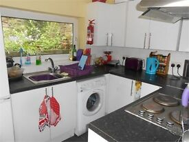 4 bedrooms in Bayview Terrace, Brynmill, Swansea, SA1 4LT
