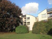 1 bedroom flat in Derby Road, Caversham, Reading, RG4