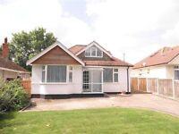 3 bedroom detached bungalow to let in Blandford £995 pcm