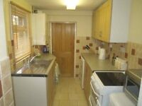 DOUBLE ROOM - Sydenham - for adult professional