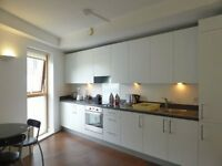 1 bedroom flat in Brighton Belle - P1488