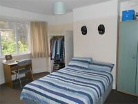 3 bedrooms in Mount Pleasant, Mount Pleasant, Swansea, SA1 6EQ