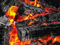Firewood forsale