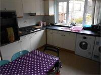 5 bedrooms in Alexandra Terrace, Brynmill, Swansea, SA2 0DU