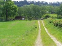 Land Wanted. Cash Paid. Anything Considered. Equestrian. Hampshire. Smallholding Plot. Titchfield.
