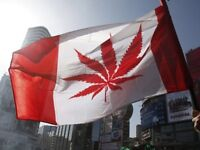 Canada's Official 420 National Anthem