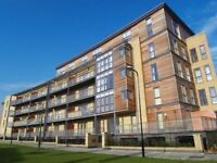 MODERN 1 BED APARTMENT AVAILABLE FOR RENT IN CLAPTON/ E5
