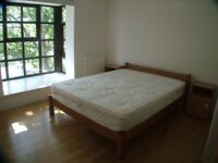 1 bedroom in (ROOM 2) (Professional House Share), Rope Street , Canada Water, SE16
