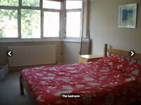 Large room to rent in Raynes Park
