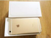 Iphone 6 Plus Gold 16GB----Excellent Condition -----£300.00 No offers