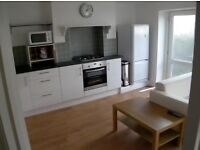 3 Bedroom House, St Judes, Plymouth