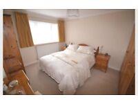 Double Room £500pcm Basingstoke