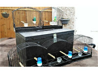 Carrying cages with case