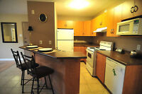 Luxury Apartment avail everything included 5 min walk to U de M