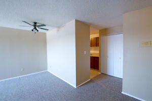 **LAST 1 BED FOR $795** Spacious + Renovated & Only Pay Power!