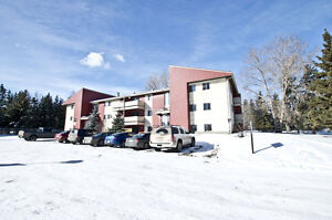Renovated 2 Bdrm Suite! $875 + Power! Immediate Possession!