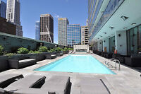 Immaculate fully furnished 1 bedroom and den - Yonge Bloor CASA