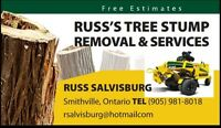 Tree Stump Removal