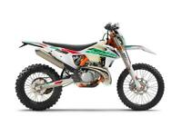KTM 250 EXC TPI Six Days 2021