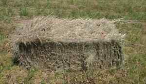 Small grass bales