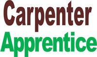 Carpenter Apprentice – a trade with a future!