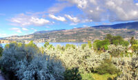 Waterfront, View, Downtown Kelowna, Discovery Bay
