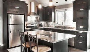 New Style CUSTOM Kitchen Cabinets within Limited BUDGET!!!