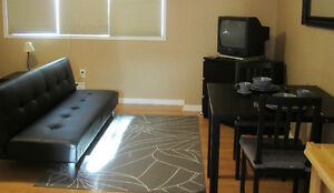 Fully Furnished Coach House Studio Free Utilities & Internet!