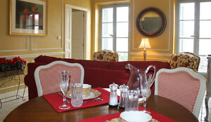 Beautiful Luxury 1 Bedroom Apartment in Carcassonne, France