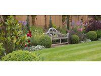 Soft landscaper/plants person