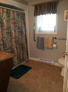 FANTASTIC two bedroom apartment in Paradise! St. John's Newfoundland image 4