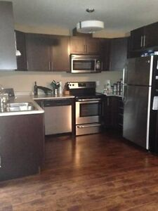 Brand new 2 bedroom apartment in Drumbo for July 1