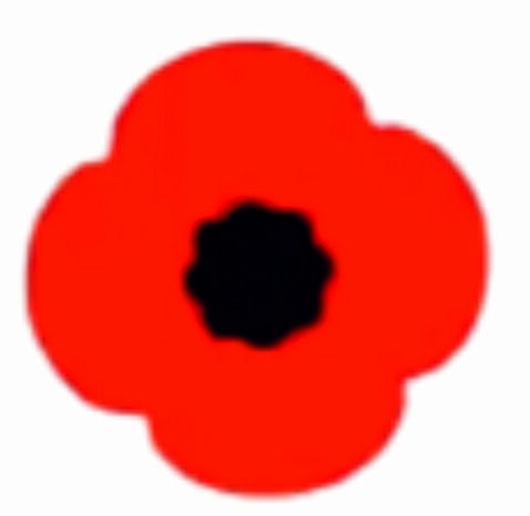 Home Decoration - 20x Poppy Remembrance vinyl sticker stickers craft  lest we forget car home
