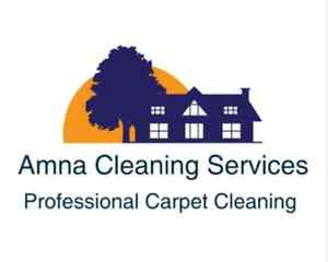CARPET STEAM CLEANING - UPHOLSTERY -TILE AND GROUT Kitchener / Waterloo Kitchener Area image 1