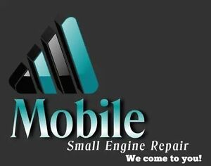 Mobile Small Engine Repairs garden tractor Call 780-862-0355