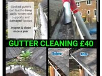 Gutter Vac Cleaning (Lets Unclutter that Gutter)