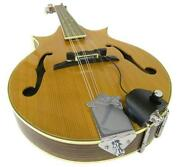 Mandolin Pickup