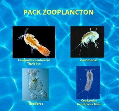 Pack Zooplancton (Copepodos Bentonicos Tisbe, Tigriopus, Gammarus y Rotiferos)