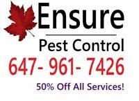 Pest Control Hamilton/ Burlington Region  - 647 961 7426
