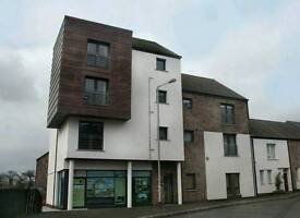 2 Bed apartment Lisburn