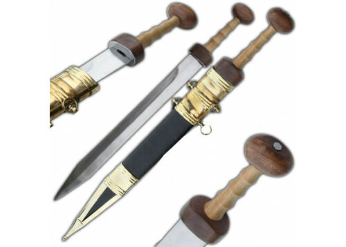 Roman Gladius Legion Gladiator Historic Sword