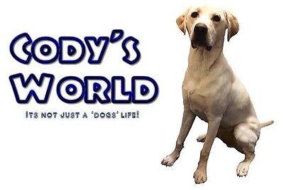 Cody's World Ltd