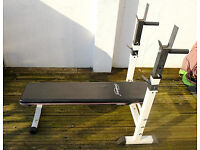 Weights Bench with Dip Bars