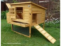 Chicken coop for 6 hens have fresh eggs