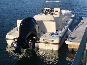 2015 Boston Whaler 180 Dauntless
